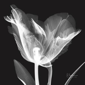 Lusty Tulip 1 by Albert Koetsier