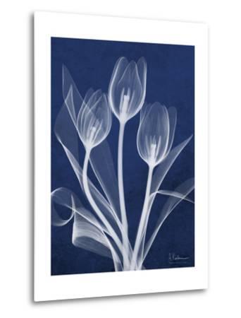 Magnificent Indigo Tulips