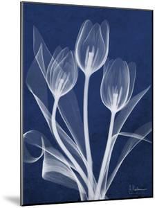 Magnificent Indigo Tulips by Albert Koetsier