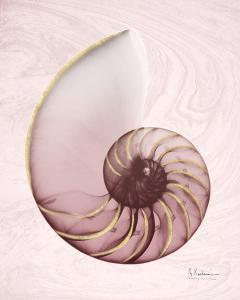 Marble Blush Snail 1 by Albert Koetsier
