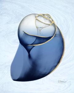 Marble Indigo Snail 2 by Albert Koetsier