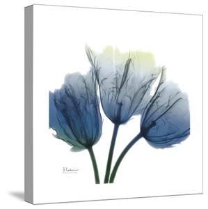 Midnight Tulips by Albert Koetsier