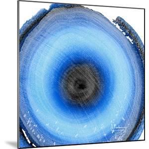 Mineral Rings 4 by Albert Koetsier