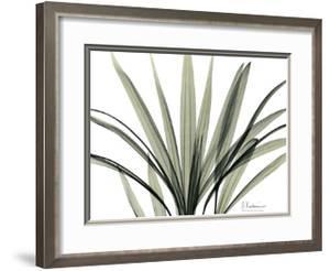 Mini Palm Tree by Albert Koetsier