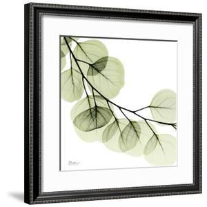 Mint Eucalyptus 2 by Albert Koetsier