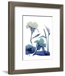 Morning Bloom 1 by Albert Koetsier