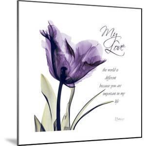 My Love Tulip by Albert Koetsier