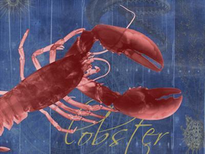 Nautical Lobster 1