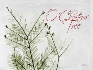 O Christmas Evergreen by Albert Koetsier