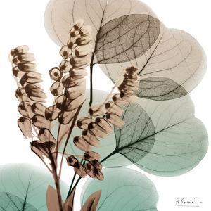 Oasis Eucalyptus 1 by Albert Koetsier