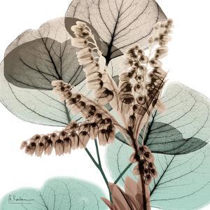 Oasis Eucalyptus 2 by Albert Koetsier