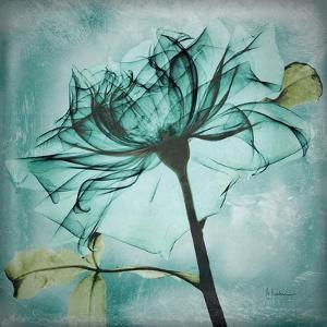Ocean Rose 2 by Albert Koetsier