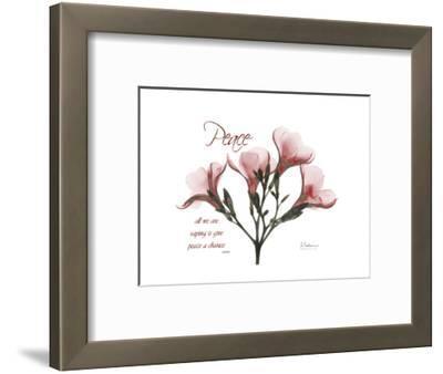 Oleander Peace