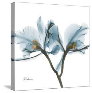 Orchid Blue by Albert Koetsier