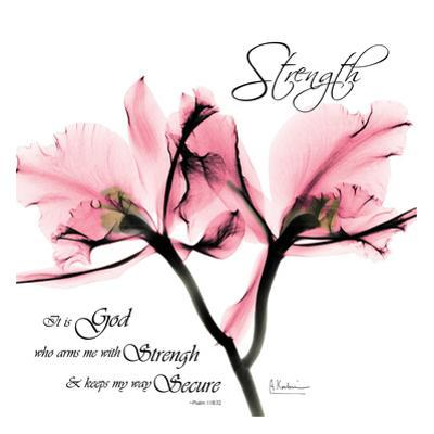 Orchid Strength