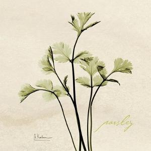 Parsley Moment by Albert Koetsier