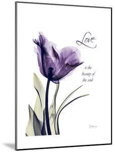 Purple Gentian Love by Albert Koetsier