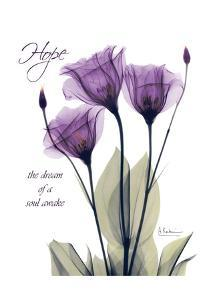 Purple Tulip, Hope by Albert Koetsier