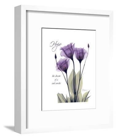 Purple Tulip, Hope