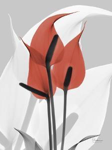 Red Moment Flamingo by Albert Koetsier
