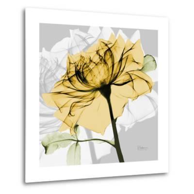 Rose in Gold 5