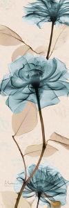 Rose Moments by Albert Koetsier