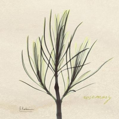 Rosemary on Beige