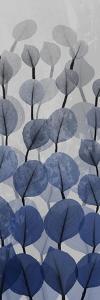 Sapphire Blooms 4 by Albert Koetsier