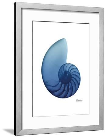 Scenic Water Snail 2