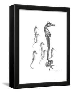 Sea Horse Collage by Albert Koetsier
