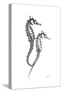 Sea Horse Twins by Albert Koetsier