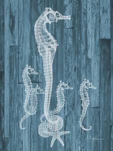 Seahorse Wood by Albert Koetsier