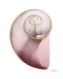 Shimmering Blush Snail 2 by Albert Koetsier