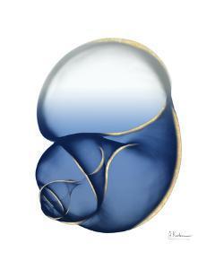 Shimmering Indigo Snail 1 by Albert Koetsier