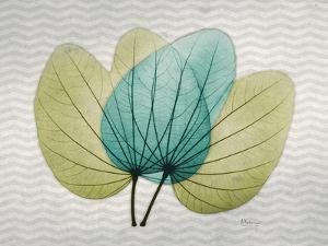 SoHo Orchid 3 by Albert Koetsier
