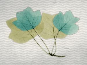 SoHo Tulip Tree by Albert Koetsier