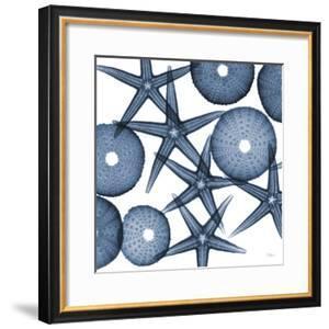 Starfish Blues by Albert Koetsier
