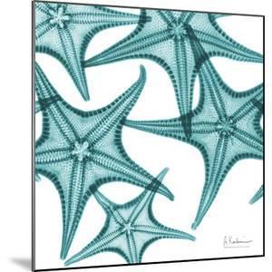 Starfishes by Albert Koetsier
