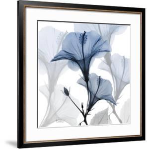 Steel Hibiscus by Albert Koetsier