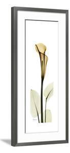 Tall Orange Lily by Albert Koetsier