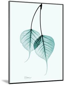 Teal Bodhi Tree by Albert Koetsier