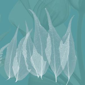 Teal Leaf Xray by Albert Koetsier