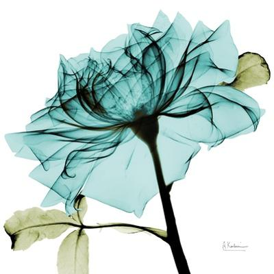 Teal Rose 2 by Albert Koetsier