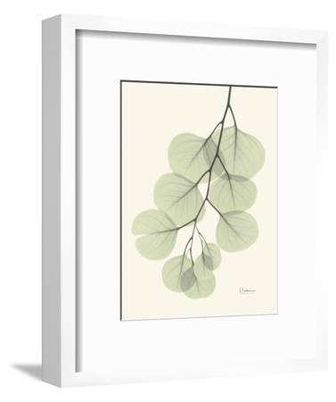 The Eucalyptus Moment