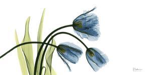 The Three Tulips L83 by Albert Koetsier