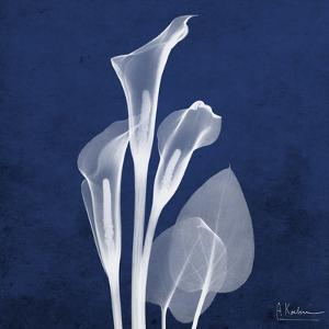 Three Indigo Calla Lilies by Albert Koetsier