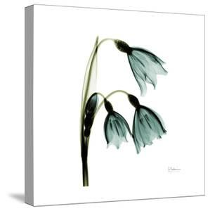 Three Tulips in Green by Albert Koetsier