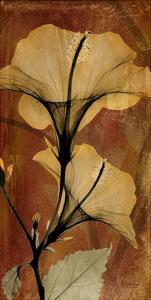 Topaze Opus Hibiscus by Albert Koetsier