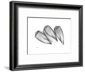 Triplets by Albert Koetsier