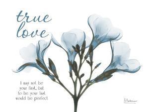True Love Oleander by Albert Koetsier